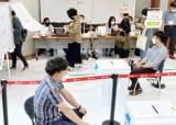 주민투표·주민소환 장벽낮추기…개표요건폐지·전자투표 추진