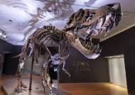 가장 완벽한 티라노사우루스 화석, 경매서 368억원에 낙찰