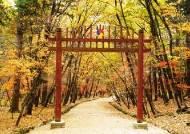 도심서 가까운 '코로나 힐링'···조선왕릉 숲길 8곳 새로 열렸다