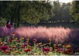 [조용철의 마음 풍경] 꽃길