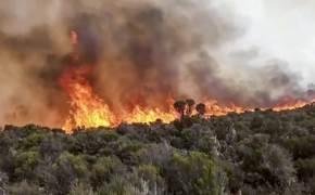 불타는 아프리카 최고봉 킬리만자로, 소방대원과 주민 등 500여명 사흘째 진화