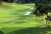코로나에도 골프장은 '풀부킹'…해외 막히면서 내수효과 3조원