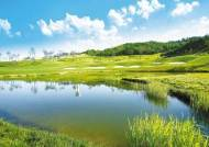 [분양 Focus] 제주 12개 명문 골프장 회원 요금으로 라운딩
