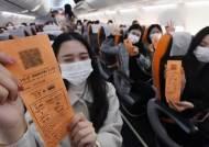 비행기는 탔지만, 목적지는 없다···완판된 9만9000원 여행