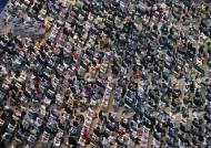 '오프라인 행사' 모험 건 이곳···부산영화제 조용한 매진 행렬