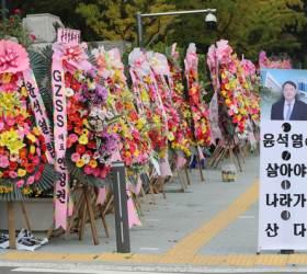 """""""법무나이트 춤이애 부킹 100%""""로 번진 윤석열 <!HS>국감<!HE> 여진"""
