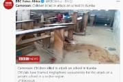 카메룬 학교에 괴한들 총기 난사, 어린이 8명 사망…12여명 부상