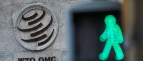 """유명희 반대한 日 정부, """"WTO 선거, 아직 진행 중... 언급 않겠다"""""""