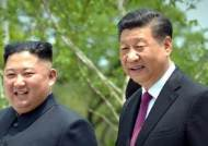 """시진핑, 김정은에 답전 """"두 나라 친선 더욱 굳건해지고 있다"""""""