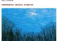 마윈 쉿! 중국 관영매체가 말 구름 그림을 올린 이유