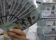 '달러의 덫' 벗어나자…中, 美국채는 다이어트. 日국채는 폭식