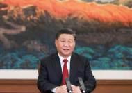 """시진핑 """"쌍순환, 폐쇄경제 아니다"""" 국제사회에 강조하는 속내"""
