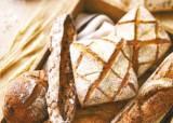 [맛있는 도전] '빵의 기원을 찾아 열정을 더해 굽다'