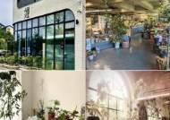 [더오래]'인스타 감성' 저격해 핫플레이스된 식물 카페