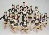 박성광의 개콘 vs 임호의 크루세이더스, 30일 연예인야구 첫 우승 도전