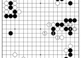 [삼성화재배 AI와 함께하는 바둑 해설] 무엇이 요석이냐