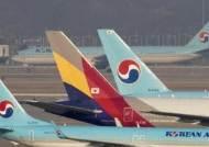 한 고비 넘긴 산업은행…'3자 유증'으로 항공사 통합 간다