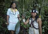 """""""숲은 파는 물건 아니다"""" 아마존 지켜낸 원주민 <!HS>여성<!HE> '그린 <!HS>노벨상<!HE>' 받았다"""