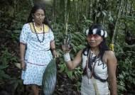 """""""숲은 파는 물건 아니다"""" 아마존 지켜낸 원주민 여성 '그린 노벨상' 받았다"""