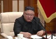 """김정은 중국산 백신 접종설…일각선 """"외교관 접종 첩보 와전"""""""