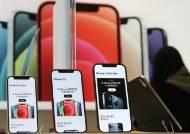 애플 '덕' 웃은 한국 OLED...화웨이 '탓' 엇갈린 내년 전망