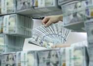 """""""원화가치 10% 오르면 총수출 3.4%↓""""…원화강세 충격도 부익부 빈익빈"""