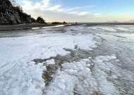한강도 바다도 얼었다…북극발 한파에 8일 서울 영하 17도
