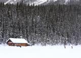 [한 컷 세계여행] 겨울날의 로키, 에메랄드빛보다 매혹적인 흑백 세상