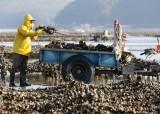 """2030년 어촌소득 7000만원으로 올린다 """"도시소득의 90%"""""""