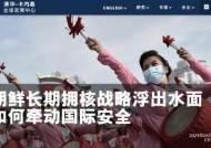 """中 소장파 학자 경고 """"北, 전술핵으로 韓 압박···통일 시도할 것"""""""