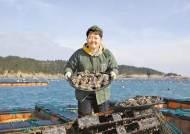 [남도의 맛&멋] 청정 완도에서 양식한 '바다의 산삼 전복'으로 건강을 선물하세요