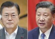 """시진핑 """"비핵화는 공동 이익에 부합…文대통령 높이 평가"""""""