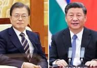 """시진핑, 문 대통령과 통화 """"코로나 안정되면 조속히 방한"""""""