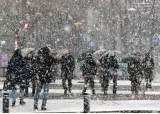 함박눈 내린 서울은 눈꽃 세상…오후부터 강풍에 한파 몰아쳐