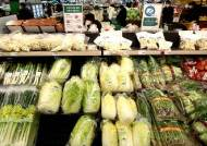 소비자물가 4개월 연속 0%대…축산물은 6년만에 최대 상승