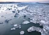 최저·최고기온 기록 동시에 갈아치운 이상한 겨울 날씨, 왜?