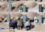 올해 설 성묘는 비대면으로…전국 봉안시설 사전예약제 운영