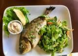 [더오래]'어두육미'에 눈·껍질 영양 듬뿍…봄이 제철인 생선