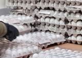 달걀 수입에도 가격 안잡히자…정부, 살처분 범위 3→1㎞ 축소