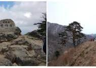 [더오래]변하면서도 언제나 첫 마음인 어머니산, 지리산