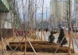 미세먼지 줄이고, 폭염땐 <!HS>기온<!HE> 내리고…춘천의 '도시숲' 실험