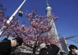 日 내일부터 오사카 등 6개 도시 긴급사태 해제...관광지는 벌써 '북적'