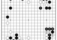 [삼성화재배 AI와 함께하는 바둑 해설] AI의 세계