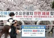 코로나가 또 앗아간 봄꽃축제…'진해군항제' 2년 연속 취소