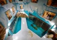 투숙객 둘러싸인 호텔 가운데···욕먹는 '세계 최초 북극곰 호텔'