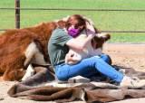 소 껴 안고 눈물 터뜨리는 사람들…농장마다 예약 꽉 찼다