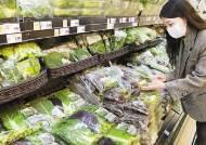 [힘내라! 대한민국] '당일 새벽 수확, 바로 매장으로'신선식품 강화