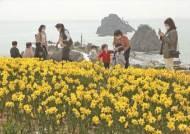 [사진] 오륙도의 봄