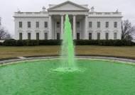 아일랜드계 美 대통령 바이든, 클로버 꽂고 아일랜드 총리와 회담