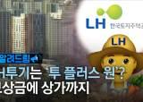 [알려드림] 벌집·빽빽·쪼개기…전문가도 놀란 LH 땅투기 수법